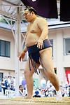 Ikioi, <br /> APRIL 17, 2017 - Sumo : Yasukuni Shrine Honozumo is a ceremonial annual sumo tournament held in the precincts of the Yasukuni Shrine in Tokyo, Japan. (Photo by Yohei Osada/AFLO SPORT)