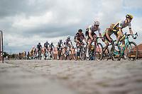 peloton over the cobbles<br /> <br /> 101st Kampioenschap van Vlaanderen 2016 (UCI 1.1)<br /> Koolskamp › Koolskamp (192.4km)