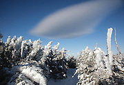 Appalachian Trail - Ice covered trees along the Carter-Moriah Trail in winter conditions near Middle Carter Mountain the White Mountains, New Hampshire USA