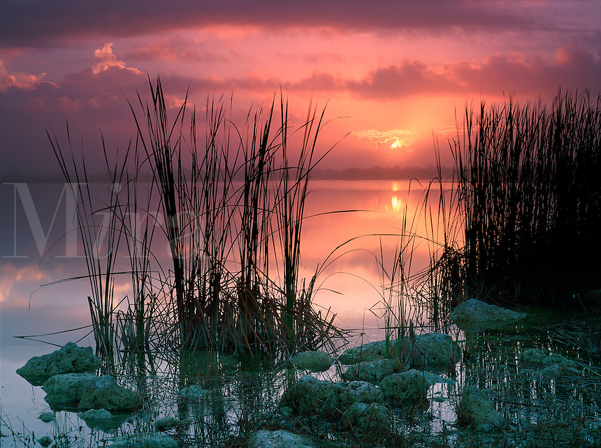 Sunrise at Swamp Lake in Everglade National Park, Florida