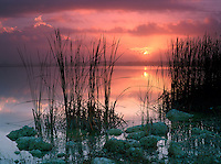 Sunrise at Swamp Lake in Everglade National Park, Florida