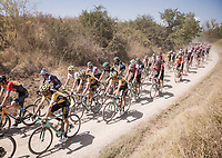 team leader (and eventual winner) Wout Van Aert (BEL/Jumbo-Visma) is escorted through the dust by his teammates <br /> <br /> 14th Strade Bianche 2020<br /> Siena > Siena: 184km (ITALY)<br /> <br /> delayed 2020 (summer!) edition because of the Covid19 pandemic > 1st post-Covid19 World Tour race after all races worldwide were cancelled in march 2020 by the UCI