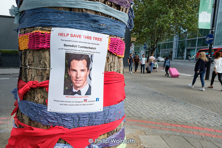 Knitted scarves and a Benedict Cummerbatch poster on a tree threatened with demolition by HS2, Euston Road, London.