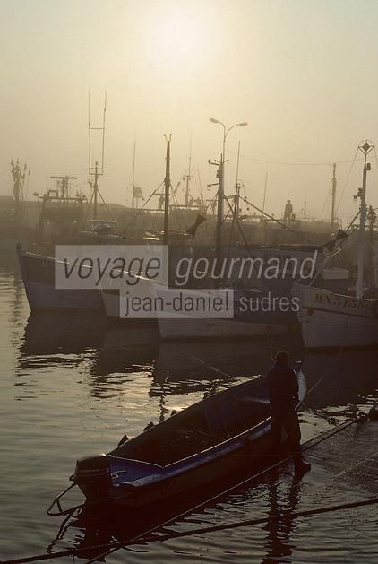 Europe/France/Poitou-Charentes/17/Charente-Maritime/Ile d'Oléron : Le port du Chapus à l'aube