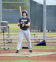 Kyle Datres - 2019 AIL Rockies (Bill Mitchell)