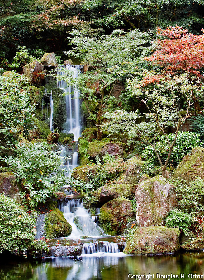 Lacey Heavenly Falls drops to the Koi Pond at the Portland, Oregon Japanese Gardens.  The Japanese Garden in Portland is a 5.5 acre respit.  Said to be one of the most authentic Japanese Garden's outside of Japan, the rolling terrain and water features symbolize both peace and strength.