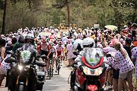 Tiesj Benoot (BEL/Lotto Soudal) leading the breakaway group up the 'Mur d'Aurac-sur-Loire' <br /> <br /> Stage 9: Saint-Étienne to Brioude (170km)<br /> 106th Tour de France 2019 (2.UWT)<br /> <br /> ©kramon