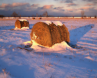 Sunset light on a field of hay rolls on the shore of Lake Huron; Huron County, MI