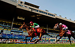 TORONTO, ON - SEPTEMBER 17: Capla Temptress (IRE) #7, ridden by Joel Rosario wins the Natalma Stakes at Woodbine Racetrack on September 17, 2017 in Toronto, Ontario. (Photo by Scott Serio/Eclipse Sportswire/Getty Images)