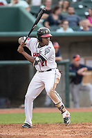 Lansing Lugnuts designated hitter Vladimir Guerrero Jr. (27) at bat during the Midwest League baseball game against the Bowling Green Hot Rods on June 29, 2017 at Cooley Law School Stadium in Lansing, Michigan. Bowling Green defeated Lansing 11-9 in 10 innings. (Andrew Woolley/Four Seam Images)
