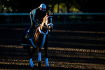 November 4, 2020: Point Of Honor, trained by trainer George Weaver, exercises in preparation for the Breeders' Cup Distaff at Keeneland Racetrack in Lexington, Kentucky on November 4, 2020. Jon Durr/Eclipse Sportswire/Breeders Cup