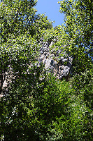 Here the beautiful rocks, surrounded by the green foliage of some high trees, that are on the top of the entrance to the cave of Collepardo.<br /> <br /> You can download this file for (E&PU) only, but you can find in the collection the same one available instead for (Adv).