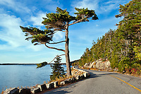 Somes Sound scenic, Mount Desert Island, Maine, ME, USA