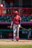 Harrisburg Senators Armond Upshaw (20) bats during a game against the Erie Seawolves on September 5, 2021 at UPMC Park in Erie, Pennsylvania.  (Mike Janes/Four Seam Images)