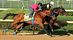 April 23, 2014  Hoppertunitiy, ridden by Rosie Napravnik, works in company with stablemate Drill.  He breezed 5F in 1:00 1/5 and galloped out 6F in 1:13 1/5 at Churchill Downs.  Trainer Bob Baffert, owners Karl Watson, Mike Pegram & Paul Weitman. He is the winner of the Rebel Stakes at Oaklawn Park.