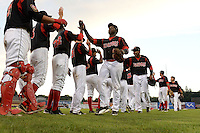 Batavia Muckdogs K.J. Woods (13) and Wildert Pujols (38) lead the team through high fives after a game against the Auburn Doubledays on August 31, 2014 at Dwyer Stadium in Batavia, New York.  Batavia defeated Auburn 7-6.  (Mike Janes/Four Seam Images)