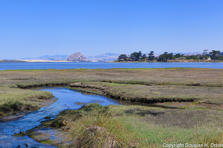 View from Sweet Springs Nature Preserve in Los Osos, California looks over Morro Bay toward power plant smoke stacks and distinctive Morro Rock.