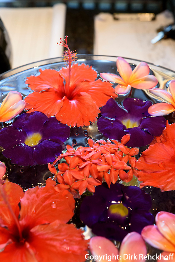 Blumen im Club Med in Sanya auf der Insel Hainan China<br /> flowers in Club Med at Sanya Bay, Hainan island, China