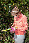 Zoo New England Biologist, Julie Lisk records data on where she located a Wood turle female in current study area in Massachusetts.