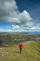 A walker ascending the Munro of A'Mharconaich above the Drumochter Pass, Monadhliath, Cairngorm National Park, Highlands<br /> <br /> Copyright www.scottishhorizons.co.uk/Keith Fergus 2011 All Rights Reserved