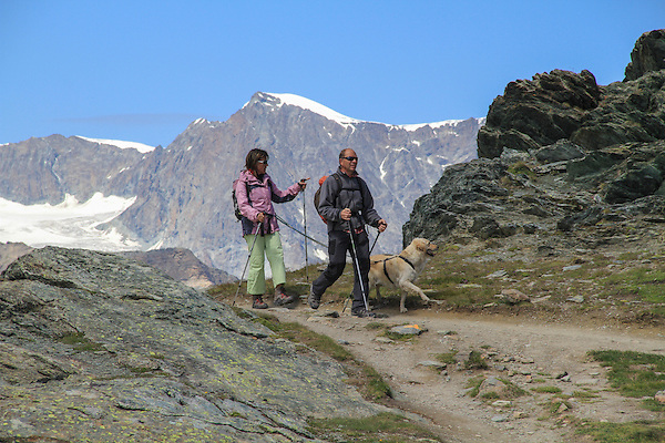 Couple walking their dog near the Matterhorn, above Zermatt, Switzerland.