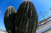 2017 NASCAR Xfinity Series<br /> DC Solar 200<br /> Phoenix International Raceway, Avondale, AZ USA<br /> Saturday 18 March 2017<br /> Erik Jones, Reser's Main St Bistro Toyota Camry<br /> World Copyright: Nigel Kinrade/LAT Images<br /> ref: Digital Image 17PHX1nk05555