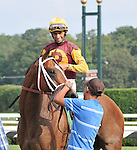 Discreteely Mine wins the Grade II Amsterdam at the Spa, Aug. 2, 2010