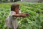 A Native girl screams while looking for her mother in a land of Progreso, in northern state of Hidalgo. Photo by Heriberto Rodriguez