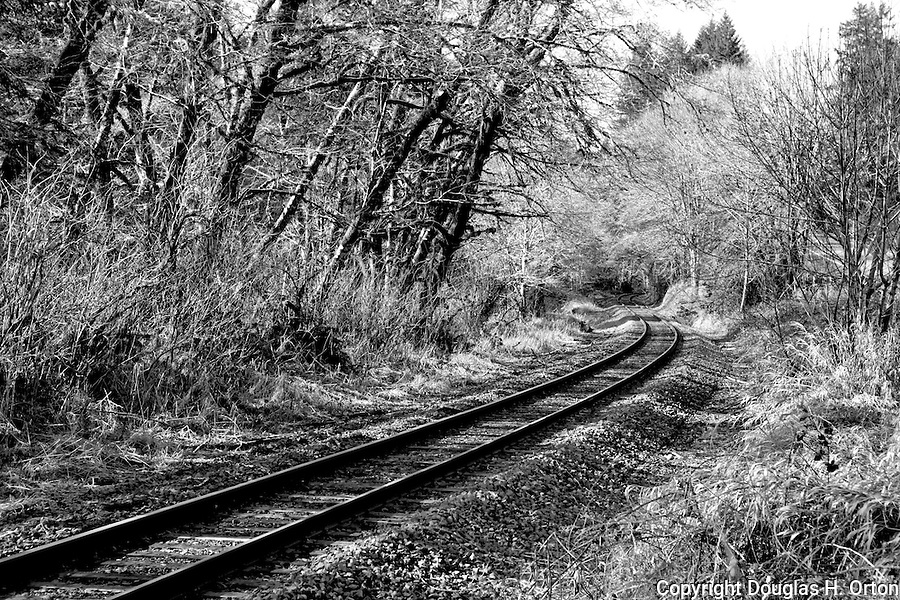 Train tracks led to the once busy harbor of Newport, Oregon.