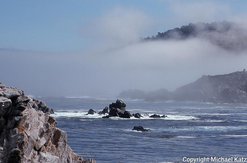 Lifting fog, Point Lobos