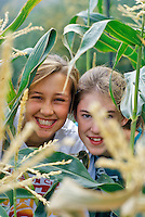 Teenage girls in corn field. Near Alpine, Oregon.