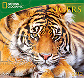 Products-National-Geographic-Tigers