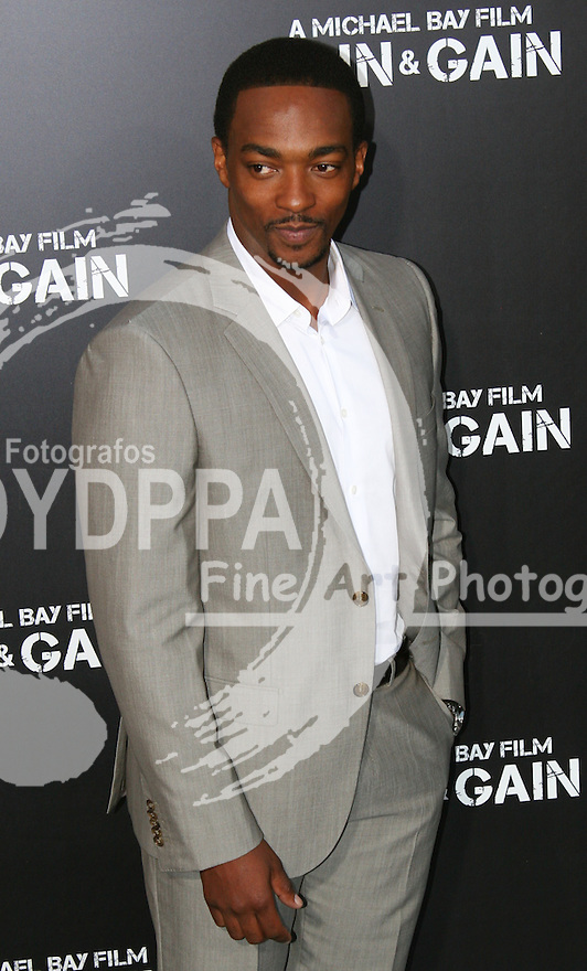 Anthony Mackie.  Celebrities gathered at The TCL Chinese Theatre in Hollywood to attend the Los Angeles premiere of Paramount Picture's  PAIN & GAIN on April 22, 2013.<br />