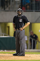 Home plate umpire Derek Mollica looks into the Gwinnett Braves dugout during the game against the Charlotte Knights at BB&T Ballpark on August 19, 2014 in Charlotte, North Carolina.  The Braves defeated the Knights 10-5.   (Brian Westerholt/Four Seam Images)