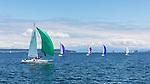 Sail boat racing, Penn Cove, Whidbey Island