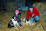 Con and Moira O'Donoghue Loughquittane with their sheep dogs