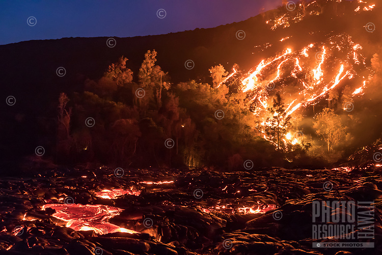 At dusk, rivers of lava both create and destroy as they flow down Pulama Pali (part of Holei Pali), Hawai'i Volcanoes National Park, Puna district, Hawai'i Island, December 2017.