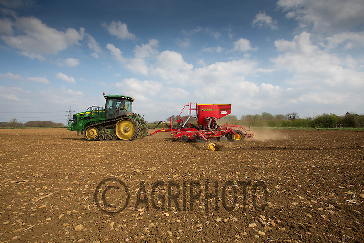 Drilling Linseed in Lincolnshire.Picture Tim Scrivener 07850 303986.tim@agriphoto.com.?.covering agriculture in the UK?.