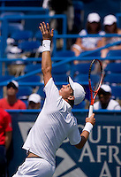 Tomas Stepanek lines up a serve during the Legg Mason Tennis Classic at the William H.G. FitzGerald Tennis Center in Washington, DC.  Mardy Fish and Mark Knowles defeated Tomas Berdych and Radek Stepanek in the doubles final on Sunday afternoon.