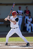 Jeff Grantham (12) of the St. John's Red Storm at bat versus the North Carolina Tar Heels at the 2008 Coca-Cola Classic at the Winthrop Ballpark in Rock Hill, SC, Sunday, March 2, 2008.