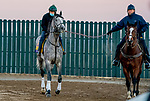 October 31, 2020: Trainer Bill Mott ponies Tacitus to the main track at Keeneland Racetrack in Lexington, Kentucky on October 31, 2020. Scott Serio/Eclipse Sportswire/Breeders Cup/CSM