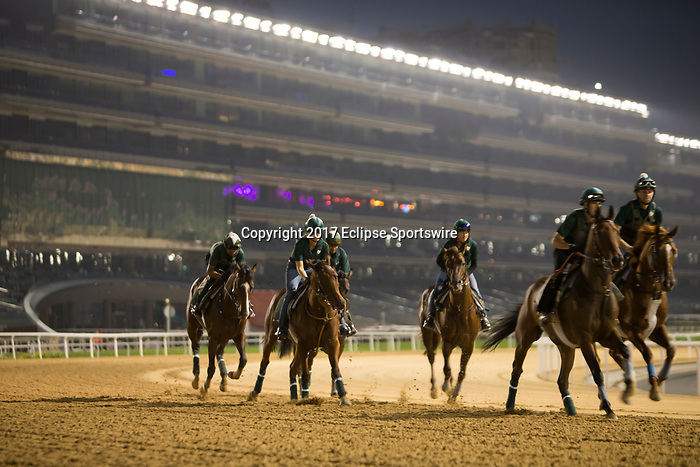 DUBAI,UNITED ARAB EMIRATES-MARCH 24:  Horses are running with thebackground for the stand at Meydan Racecourse on March 24,2017 in Dubai,United Arab Emirates (Photo by Kaz Ishida/Eclipse Sportswire/Getty Images)