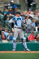 Charlotte Knights Zack Collins (8) during an International League game against the Rochester Red Wings on June 16, 2019 at Frontier Field in Rochester, New York.  Rochester defeated Charlotte 3-2 in the second game of a doubleheader.  (Mike Janes/Four Seam Images)