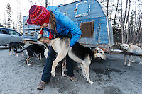 Volunteer veterinarian Medora Pashmakova examines an Elliot Anderson at the 2016 Iditarod Pre-race vet check in Wasilla, Alaska. March 02, 2016 <br /> <br /> © Jeff Schultz/SchultzPhoto.com ALL RIGHTS RESERVED<br /> DO NOT REPRODUCE WITHOUT PERMISSION