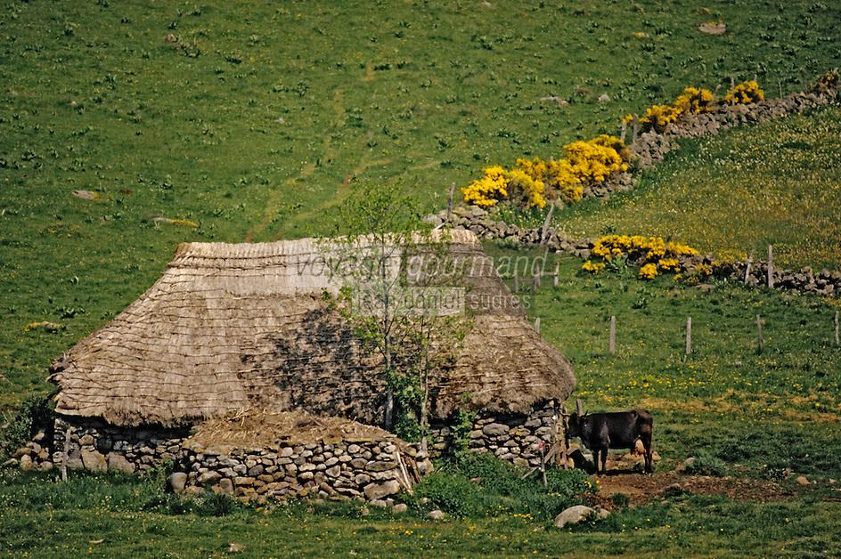 Europe/France/Auvergne/15/Cantal/Paulhac: Ancien buron en chaume