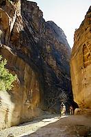Man riding a horseman and a Bedouin coming out the Siq Canyon, Petra, Jordan.