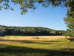 Hayrake in field. Westbrrok, CT. in Autumn.