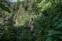 22 noviembre 2014<br /> Maria Francisco, 50 years old, in the jungle of Santa Cruz de Barillas (Guatemala) that it is sacred for the Mayas. She takes from the nature everything she needs to survive on november 22, 2014. The arrival of foreign companies to Latin America has provoked abuses of the rights of indigenous people and repression of their defense of the environment. In Santa Cruz de Barillas, Guatemala, the project of the Spanish hydroelectric Ecoener has caused murders, violent riots, the declaration of a state of siege by the army and the imprisonment of a dozen activists opposed to the project. They defend their territory and their river, called Cambalam. The river has for the Mayan people a special meaning and it is linked with their ancestors. A group of Mayan Indians, mostly women, has cut a path and has installed a resistance camp to prevent the enter of the company's machines. The prosecution has also provoked that some ecologists, with orders for their arrest, have been hidden for months in the Guatemalan jungle.<br /> <br /> In Coban, place located also in Guatemala, the hydroelectric Renace has been installed with threats to the population and false promises of development for the area. The company has also forbidden the access to the river for thousands of people and has no respected the close relationship of the Maya Indians with environment. Renace is a Guatemaltecan company but has given the contract of the  construction of the hydroelectric to the spanish company Cobra. As in Santa Cruz de Barillas, the project has divided the population and has caused riots. The project has very close families that live in extrem poverty. They are people that leave close to the hydroelectric but they don' t have electricity at home. ©Calamar2/ Pedro ARMESTRE