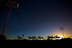 Horses race on December 14, 2013 at Betfair Hollywood Park in Inglewood, California . The Track is set to close permanetly on December 22, 2013 (Alex Evers/ Eclipse Sportswire)