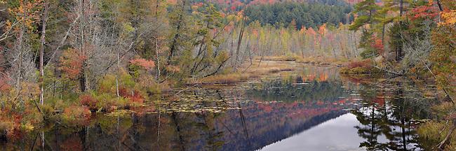 A peaceful stream in Autumn